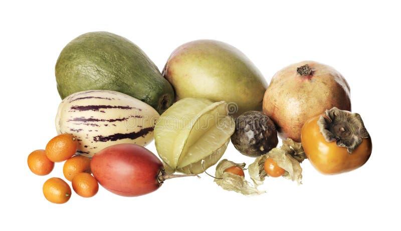 Download Exotic fruit stock photo. Image of various, kumquats - 11843640