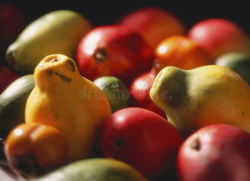 Exotic Fruit stock image