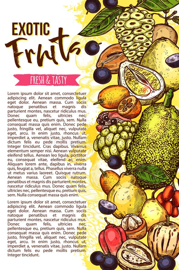 Exotic fruit banner with tropical berry border vector illustration