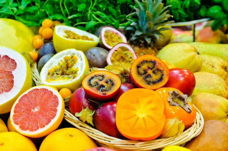 Download Exotic fruits stock photo. Image of tropical, assortment - 23130722