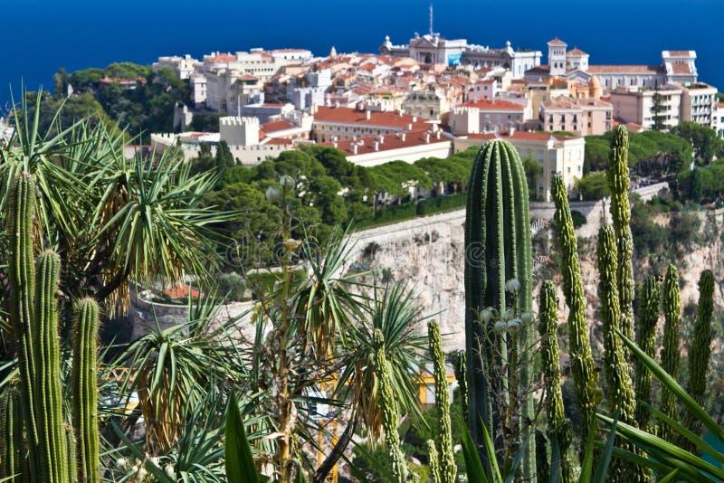 Exotic Garden from Monaco. Monaco palace view from Jardin Exotique de Monaco stock photos