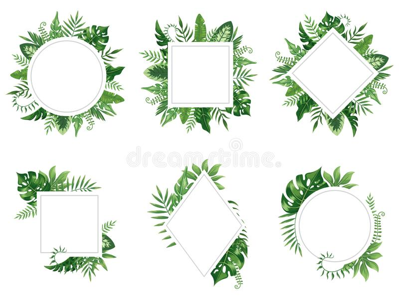 Exotic leaf frame. Spring leaves card, tropical tree frames and vintage floral jungle border isolated vector set vector illustration