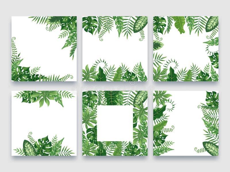 Exotic leaves frame. Tropical leaf border, nature summer frames and luxury palm leaves borders vector design background vector illustration