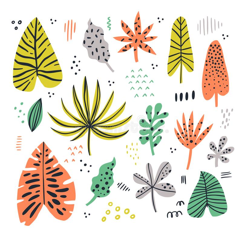 Exotic leaves hand drawn flat illustrations set vector illustration
