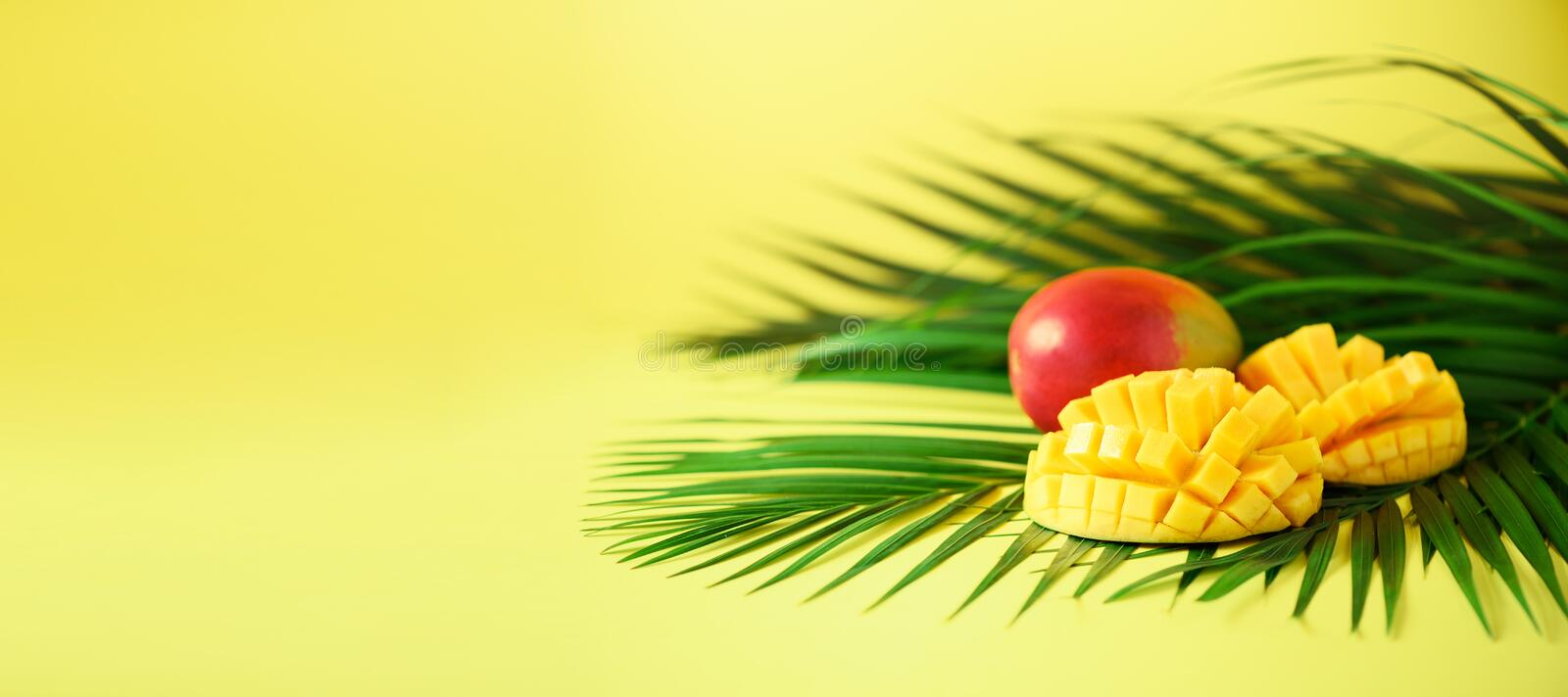 Exotic mango fruit over tropical green palm leaves on yellow background. Copy space. Pop art design, creative summer stock photos