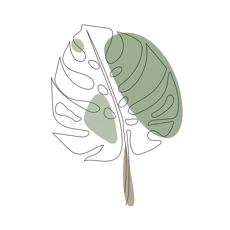 Exotic monstera continuous one line drawing summer tropical leaf hand drawn on white background minimalist design vector illustration