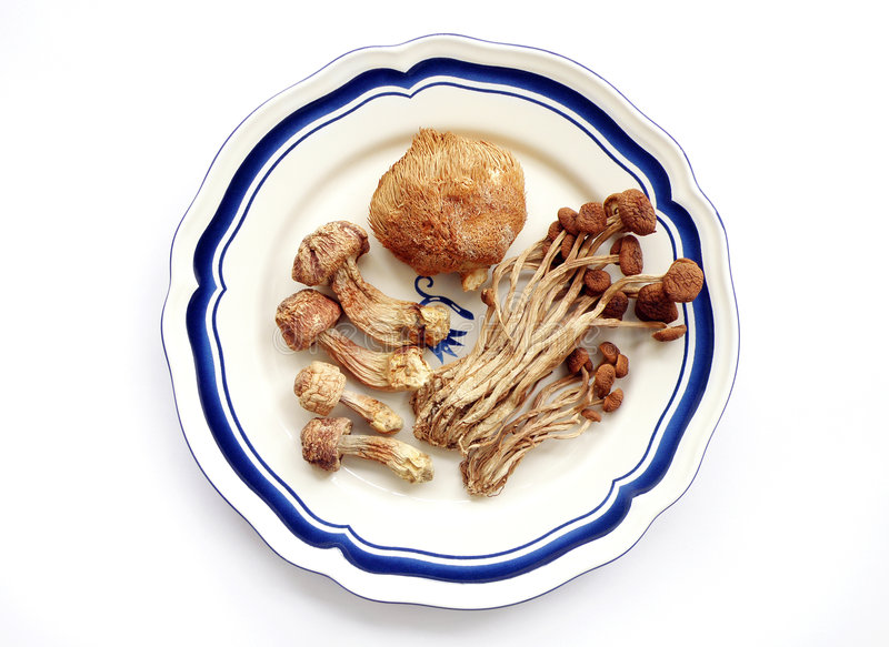 Exotic mushrooms, dried royalty free stock image