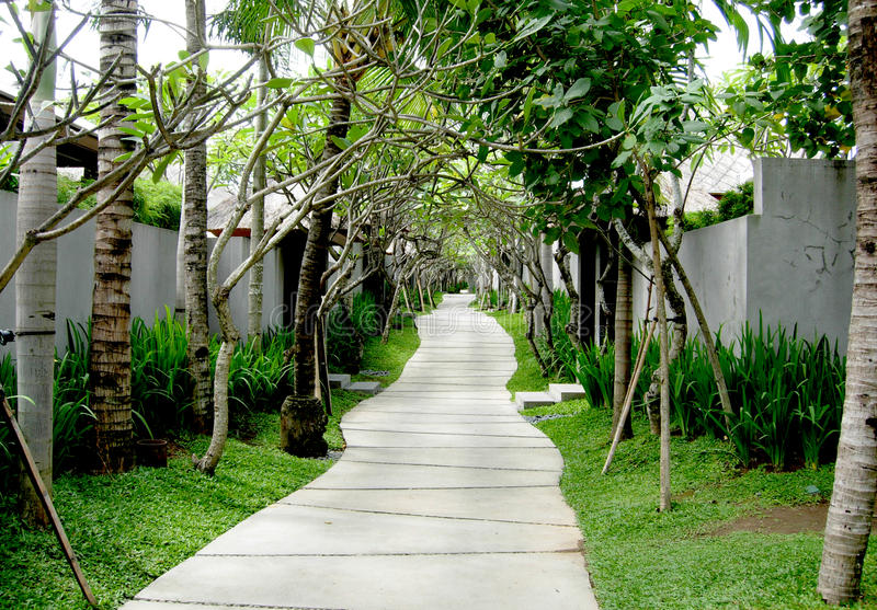 Exotic path in Bali, Indonesia stock photography