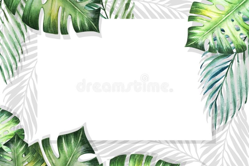 Beautiful tropical leaves border frame on white backdrop. Monstera, palm. Watercolor painting. vector illustration