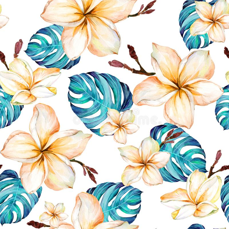 Exotic plumeria flowers and green monstera leaves on white background in seamless tropical pattern. Watercolor painting. Hand painted floral illustration stock illustration