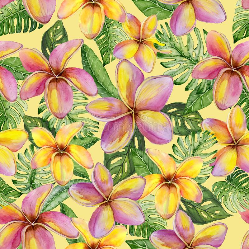 Exotic plumeria flowers and green monstera leaves on yellow background. Seamless tropical pattern in vivid colors. Watercolor painting. Hand painted floral vector illustration