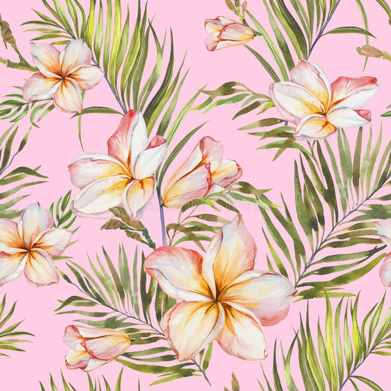 Exotic plumeria flowers and green palm leaves in seamless tropical pattern. Light pink background, pastel shades. Watercolor painting. Hand painted floral stock illustration