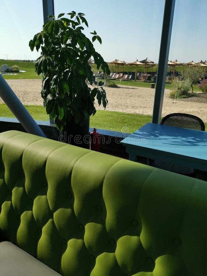 Exotic resort interior green sofa. Decorative plant and sun loungers outside at the beach stock photo