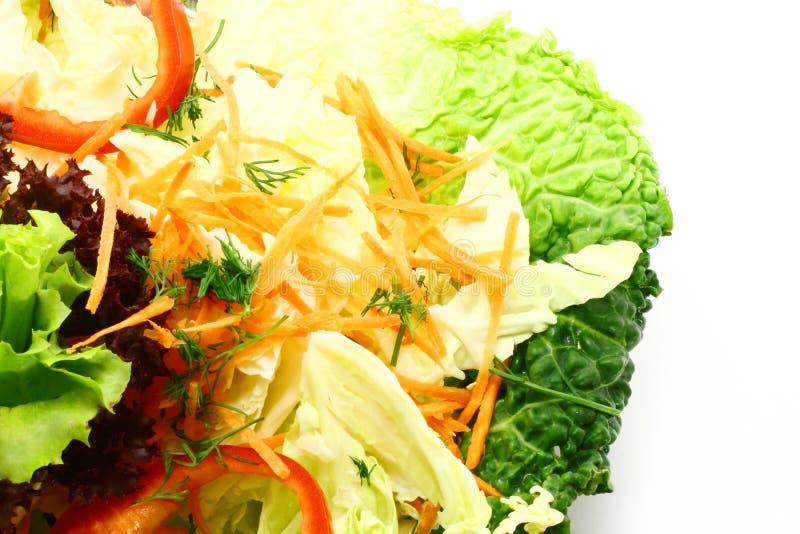 Exotic salad close-up stock image