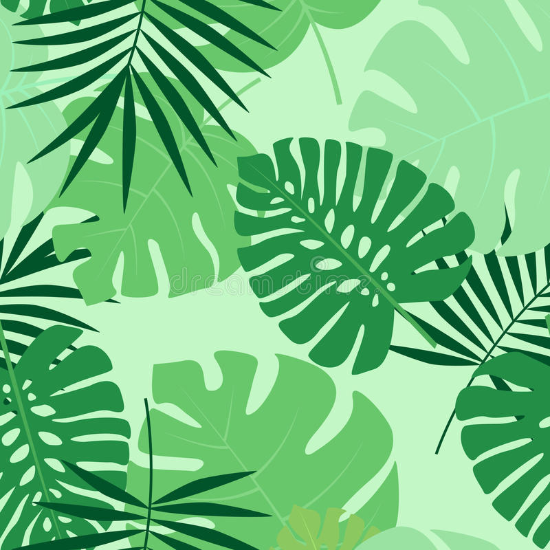 Exotic seamless pattern. Vector green illustration of palm leaves background. Exotic seamless pattern royalty free illustration