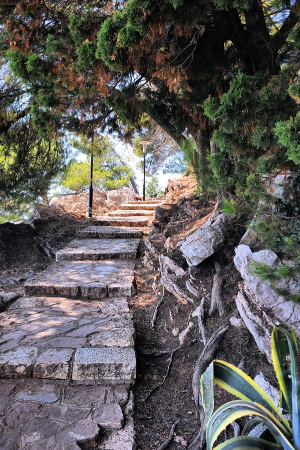 Exotic path in Milocer Park Botanical Garden located near the world famous island hotel Sveti Stefan, Montenegro, Europe. royalty free stock photography