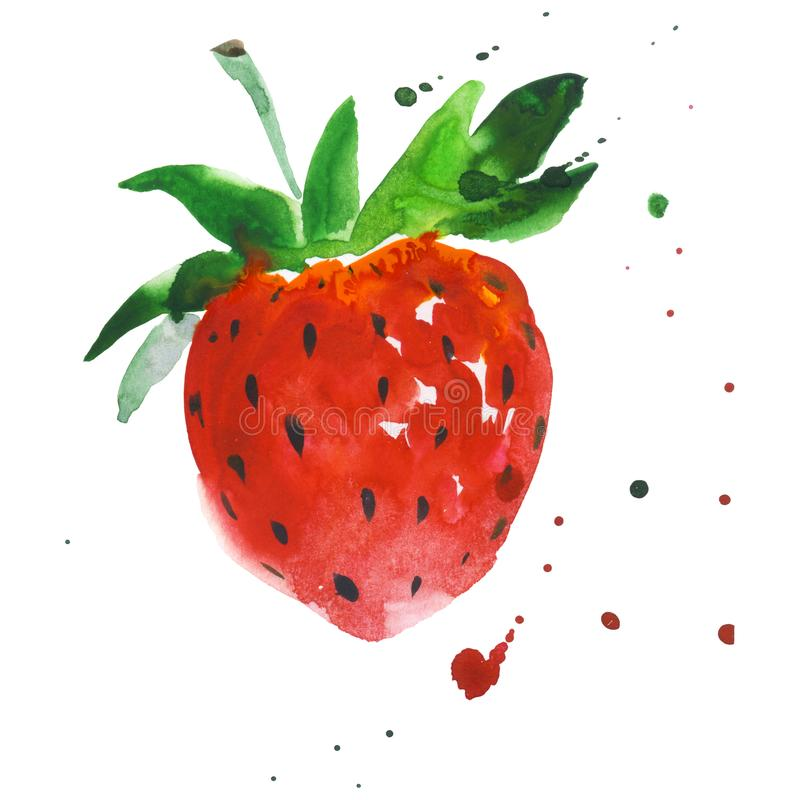 Exotic strawberry wild fruit in a watercolor style isolated. stock images