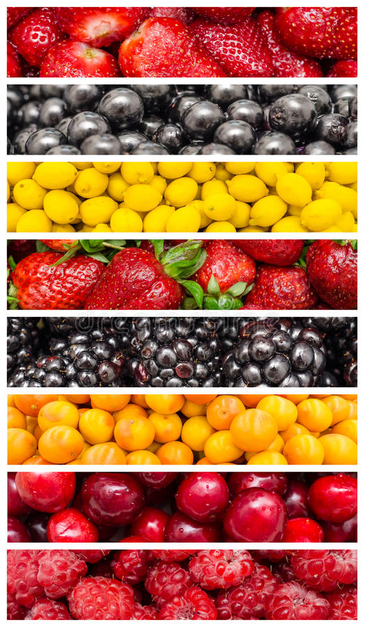Exotic Summer Fruits stock photography