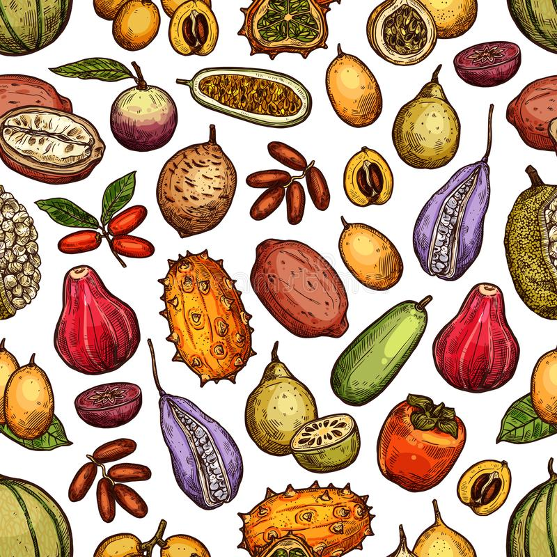 Exotic tropic fruits, tropical farm harvest stock illustration