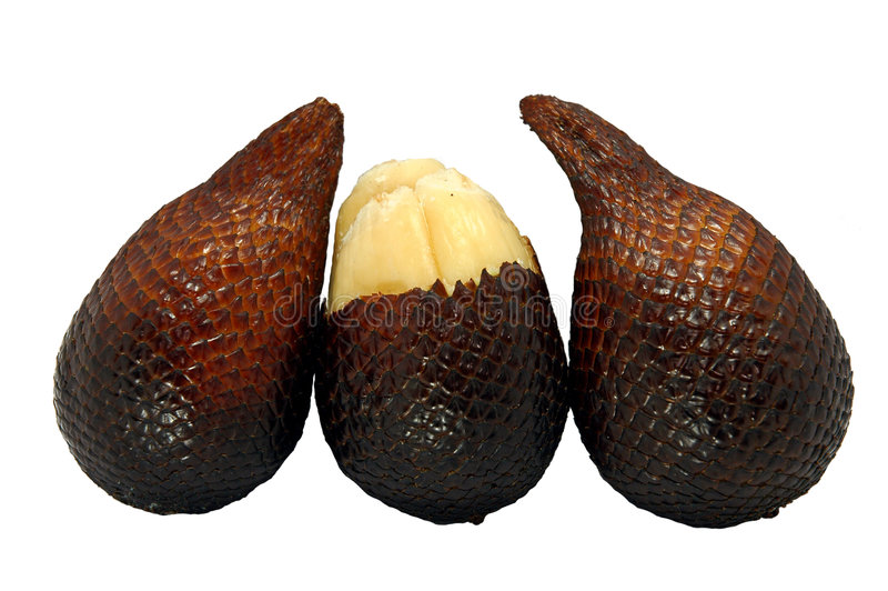 Exotic tropica fruit. Exotic tropical fruits called salak from south east asia stock images