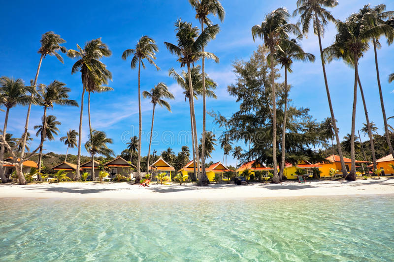 Download Exotic tropical beach. stock photo. Image of space, coast - 22329742