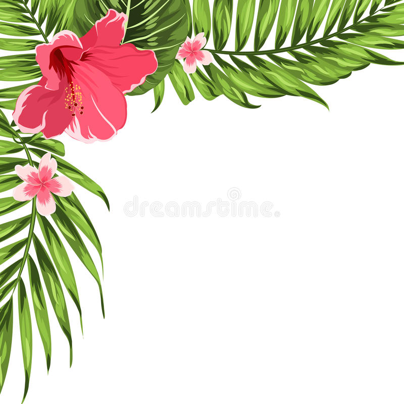 Exotic tropical corner decoration template flowers vector illustration