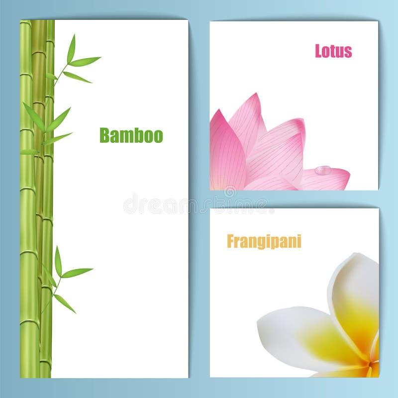 Exotic tropical flowers invitation card layout stock vector download exotic tropical flowers invitation card layout stock vector illustration of oriental daisy stopboris Choice Image