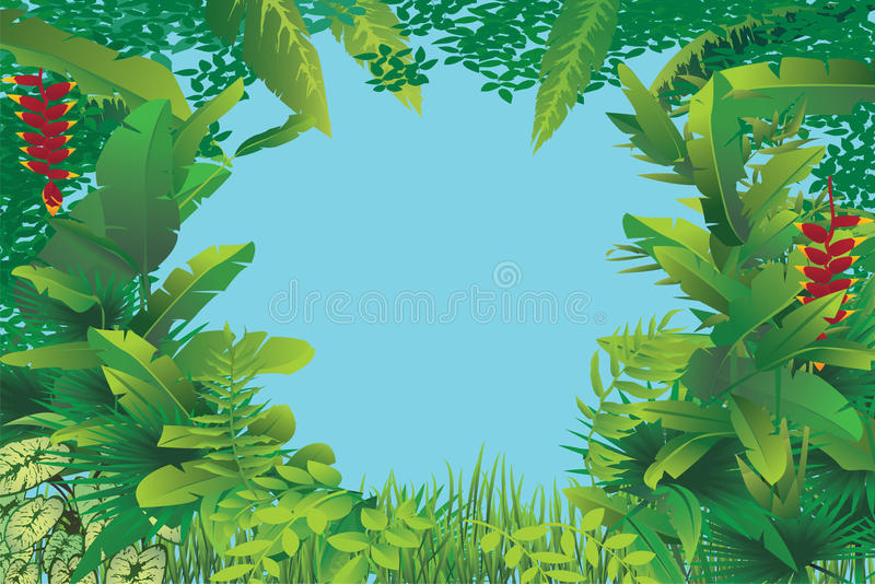 Exotic tropical forest royalty free illustration