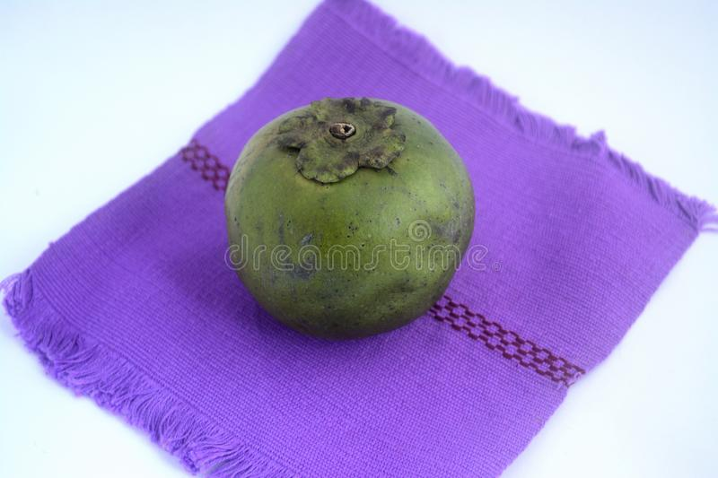 Black sapote, a delicious chocolate like fruit from Mexico royalty free stock photo