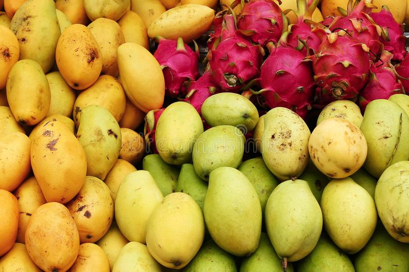 Exotic tropical fruits mango, dragon fruit closeup on a market. stock images