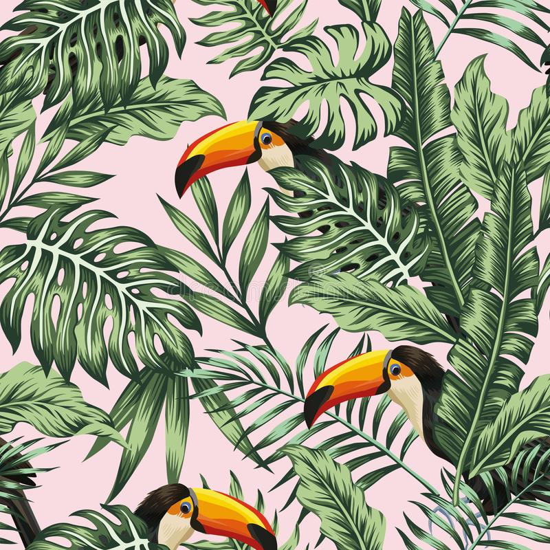 Green jungle with toucan pink background stock illustration