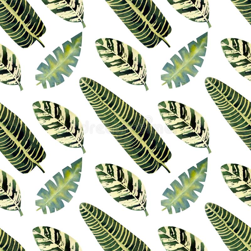 Exotic tropical leaves. Seamless pattern on white isolated background. Fashion beach art print Wallpaper. Watercolor illustration. Exotic tropical leaves vector illustration
