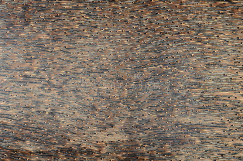 Exotic wood background royalty free stock photos