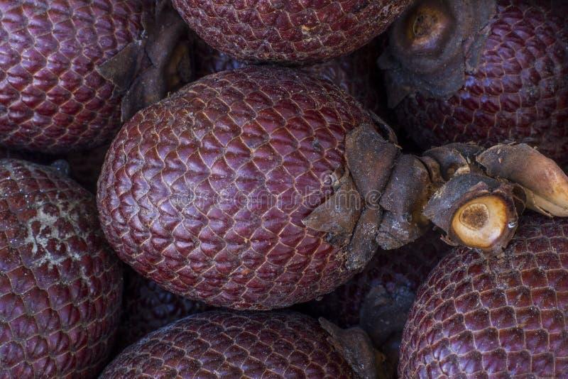 Exotisch fruit van Amerika: Aguaje of Moriche, palmfruit, buritinoten, mauritiaflexuosa, Maurity-palm royalty-vrije stock foto's