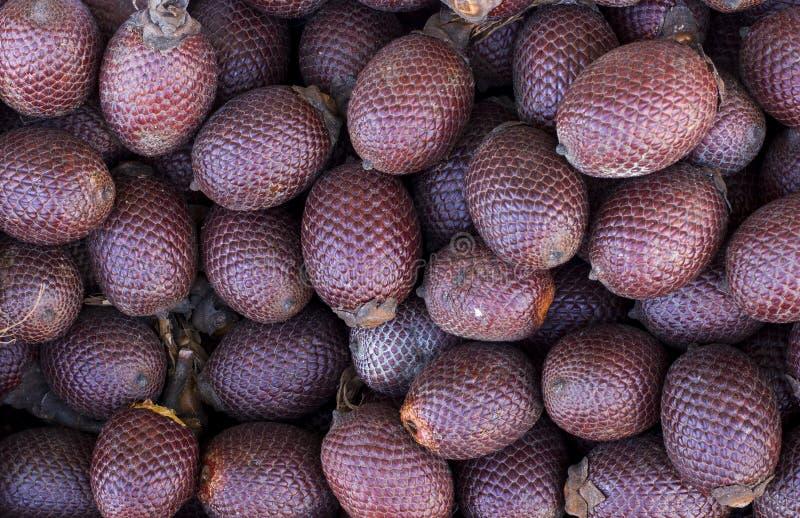 Exotisch fruit van Amerika: Aguaje of Moriche, palmfruit, buritinoten, mauritiaflexuosa, Maurity-palm royalty-vrije stock afbeeldingen
