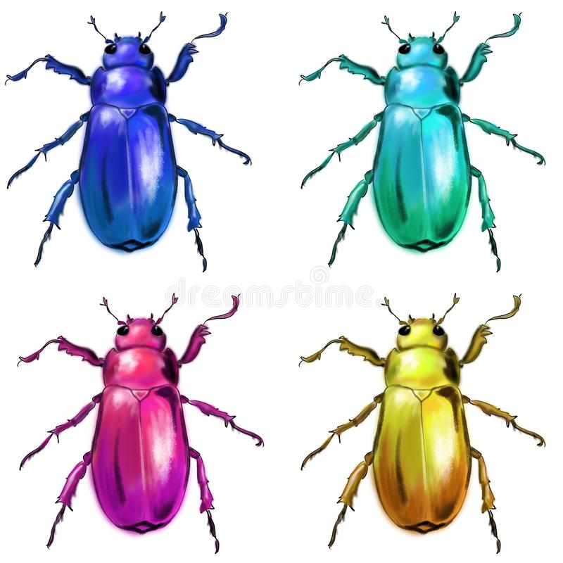 Exotisch kevers wild insect stock illustratie