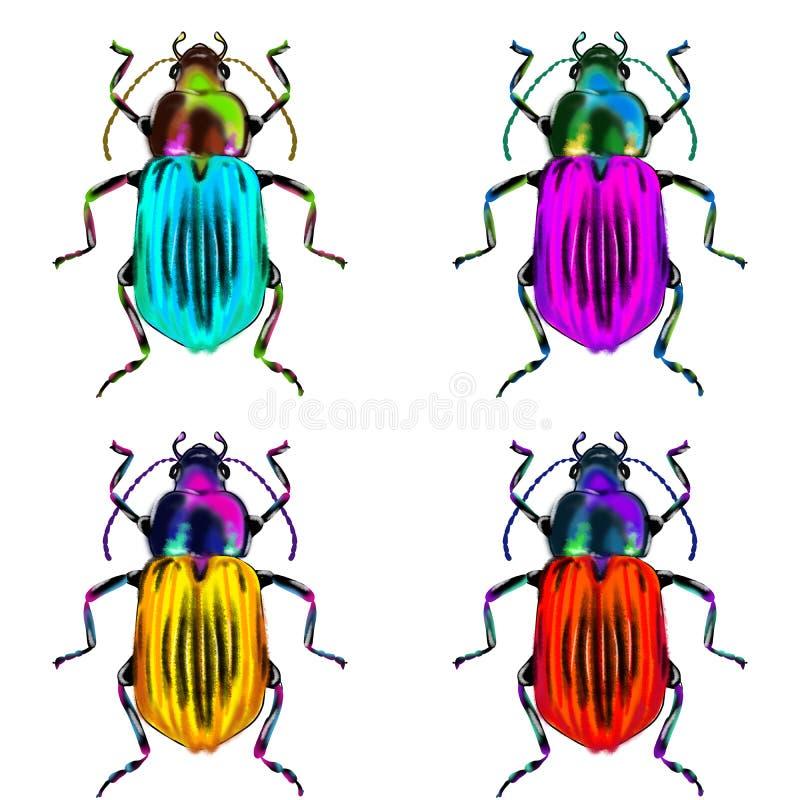 Exotisch kevers wild insect op een witte backgroud vector illustratie