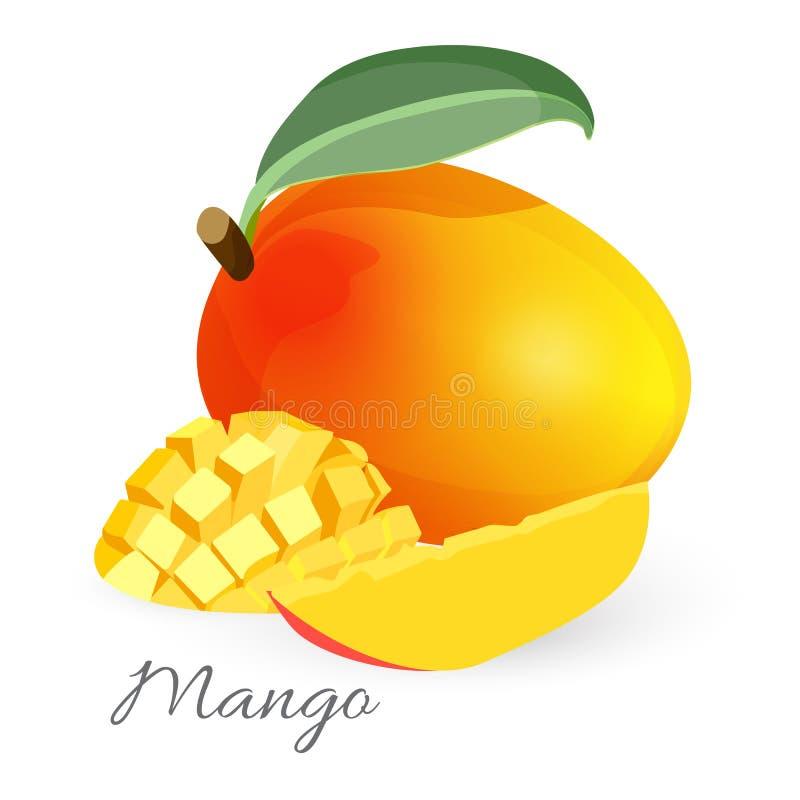 Exotisch mango tropisch fruit met groen gesneden blad en geheel vector illustratie