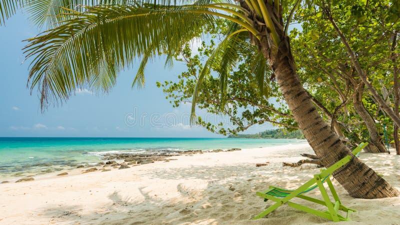 Exotisch strand met kokospalm royalty-vrije stock afbeelding