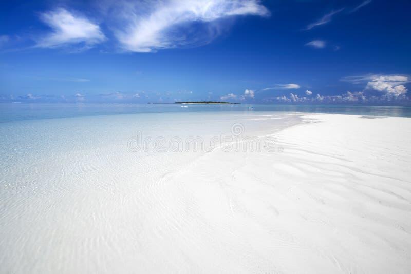 Exotisch strand onder een blauwe hemel royalty-vrije stock afbeelding