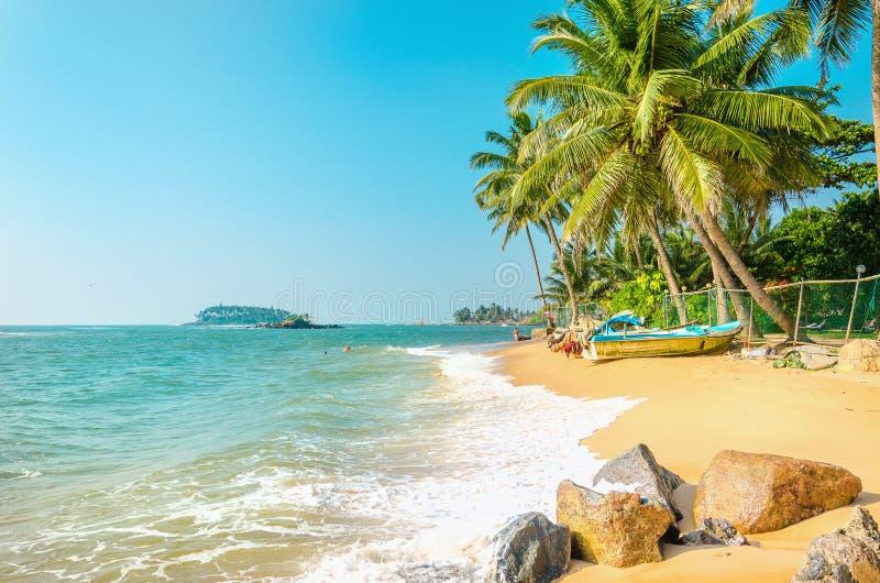 Exotisch strandhoogtepunt van palmen en blauwe hemel royalty-vrije stock foto