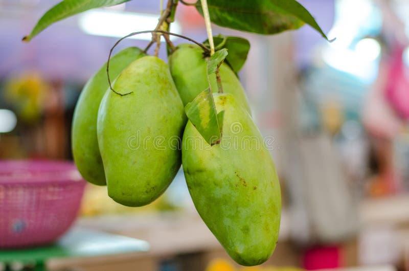 Exotisch tropisch fruit, het groene manggo hangen in verse markt royalty-vrije stock afbeelding