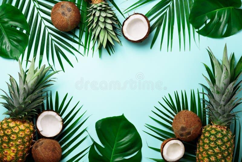 Exotische Ananas, reife Kokosnüsse, tropische Palme und grünes monstera verlässt auf blauem Hintergrund mit copyspace für Ihr lizenzfreie stockfotos