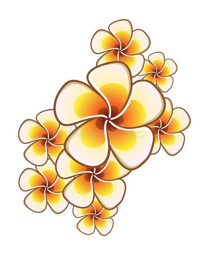 Exotische Blumen stockbild