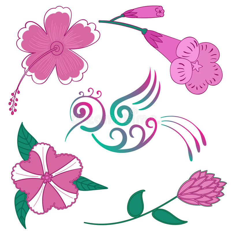 Exotische Blumen des Kolibriblumen-Vektors und Vogel Hibiscuse blühen tropischen Vogel Hibiscus-Hawaiis stock abbildung