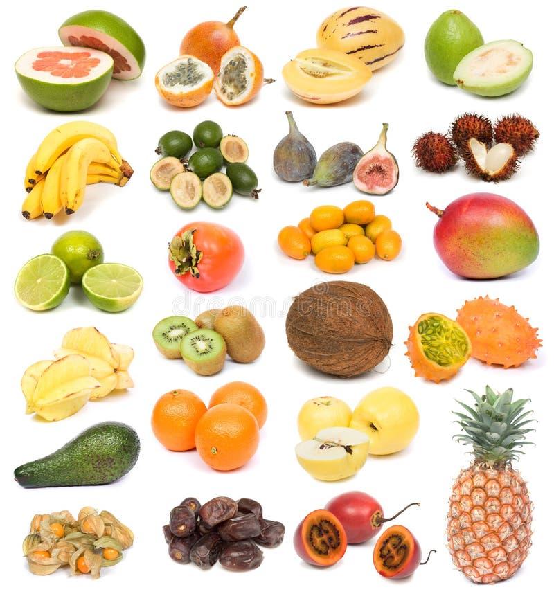 Exotische Früchte lizenzfreies stockbild