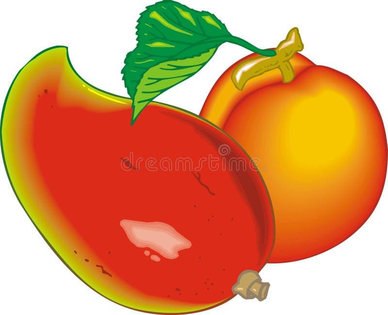 Exotische Früchte stock abbildung