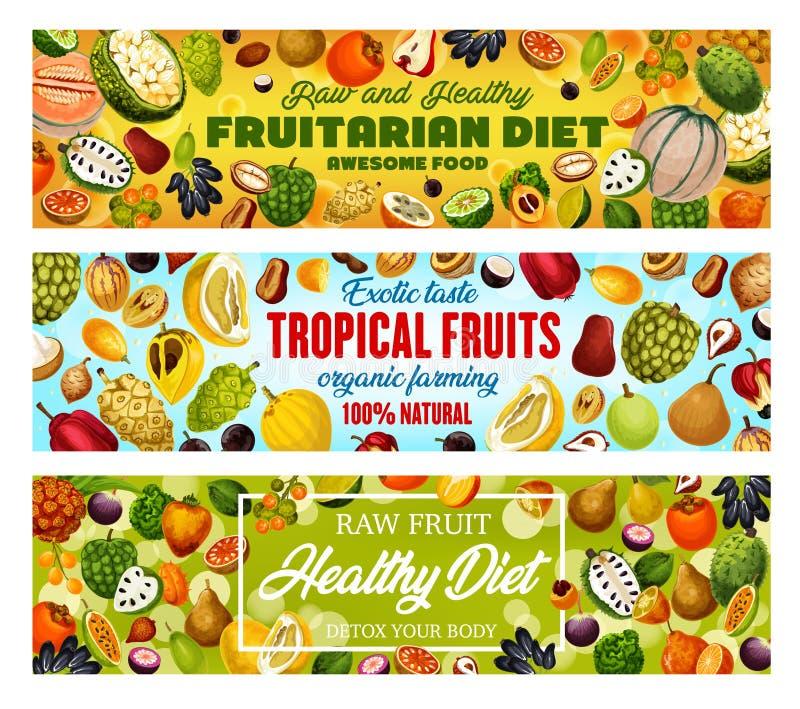 Exotische Früchte, natürliche fruitarian Nahrungsmittelernte stock abbildung