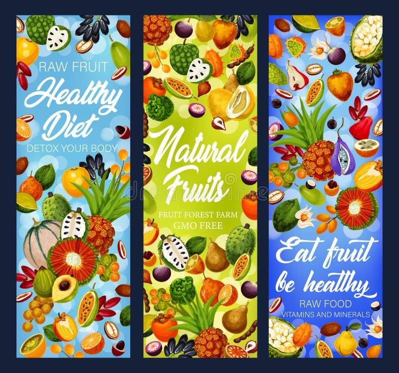 Exotische Früchte, tropische Beeren Detox-Di?t-Lebensmittel stock abbildung