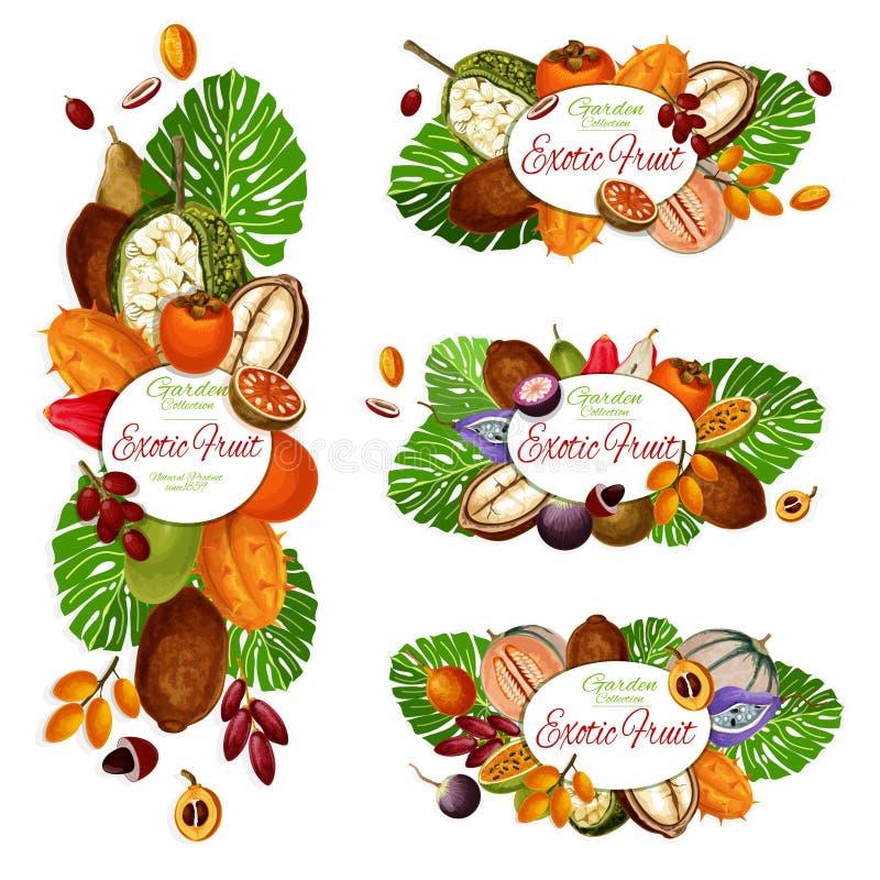 Exotische Früchte, tropische Beeren, Palmblätter stock abbildung
